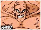 Compagno di Vegeta durante la missione per invadere la Terra, la sua forza combattiva é sotto i 5.000, tutti i guerrieri Z perderanno contro questo Saiyan e Piccolo perderà pure la vita per salvare la vita a Gohan. Sarà Goku dopo l'allenamento con Re Kaio a battere Nappa definitivamente.