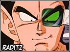 Fratello di Goku, Raditz arrivera sulla Terra con l'obiettivo di recuperare il fratello per una battaglia futura che i Saiyan dovranno fare. Alla fine non riuscirà nel suo intento, grazie anche all'aiuto di Piccolo.